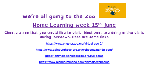 P3 Home learning 15th June 3